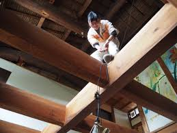 Local Natives Ceilings Meaning by Letter From Itoshima U2013 Dispatches From Post Growth Japan U2013 Medium