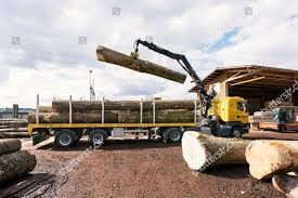 Ash Roundwood Unloaded Truck Saw Mill Konrad Editorial Stock Photo ... 1988 Intertional 9300 Sfa Dump Truck Item E5704 Sold 2017 Superior Pugmill F3609 For Sale Billings Mt 9455771 3d Milling With Trimble Equipment On A Wirtgen Mill Gps Machine Gmc Cckw 353 Log Truck Thurechts Redcliffe Photo 2001 Ford F550 Xlt Super Duty Service D3505 S Jared Mills Senior Treasury Manager Waste Management Linkedin The Key Of Conical Ball Is Improved In Process Is Loaded Sugar Cane Harvest At Cerradinho S And Sunbelt Rentals Inc Fort Sc Rays Photos Big Day Orland Free Library 4billy Goat Promotions Us Dotter Hall 1981 Freightliner Flc Bv9212 Novem