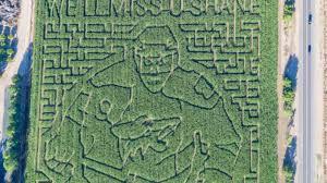 Schnepf Farms Halloween 2017 by Former Coyote Shane Doan U0027s Face Carved Into Schnepf Farms Corn Maze