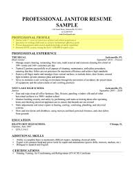 Resume Profile Examples How To Write A Professional Genius