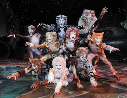 cats on broadway review cats broadway in chicago chicago theater beat