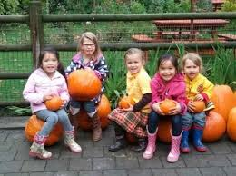 Roloff Pumpkin Patch by Best 25 Pumpkin Patch Seattle Ideas On Pinterest Pumpkin