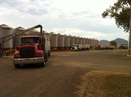 Trucks Loading Grain - Toowoomba Grain Storage & Handling Parking Storage Moving Company About Us Regency Uhaul New Dealer Marin Rv Self Offers Trucks Trucks Loading Grain Twoomba Grain Handling In Enjoy Our Free Truck Driver Service Dymon Truck City Mn Cng Vs Lng For Heavy Duty Which One Is Right Your Fleet Free Move Val Vista Lakes Valvista Semitruck San Antonio Solutions Chuck Henry Trailers Container Sales Mini Using Lift To Take Sign Business Heights Cold Rent In Dubai Archives Afridi Refrigerated