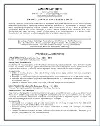 Perfect Resume Summary Samples Of Professional On A Elegant Examples Awesome