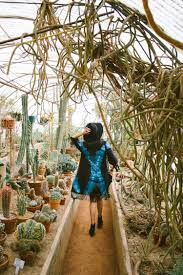Moorten Botanical Garden — Black & Blooms