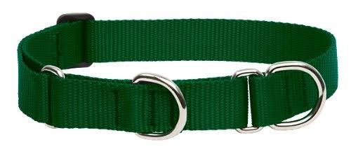 "LupinePet Martingale Combo Dog Collar - Green, Large, 1"" X 19"" to 27"""