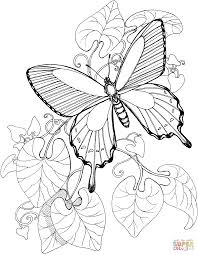 Click The Butterfly Is Flying On Garden Coloring Pages