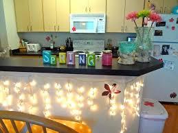 College Apartment Decorating Ideas Apartments E