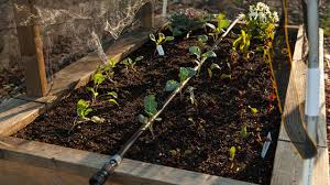 Raised Bed Soil Calculator by Easy Drip Irrigation For Raised Beds Organic Gardening Blog