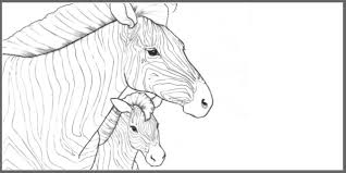 Free Download The Endangered Animals Coloring Book Ultimate Paper Mache