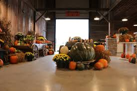 Pumpkin Picking Near Lancaster Pa by Vesperman Farms Home