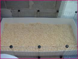 Pine Bedding For Guinea Pigs by Cage Cleaning