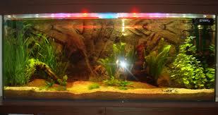 eclairage led pour aquarium eau de mer eclairage aquarium eau de mer led aquarium poisson archives page