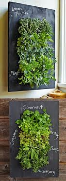 27 Best Balcony Wall Herb Garden Images On Pinterest