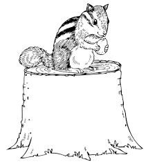 Click To See Printable Version Of Chipmunk Eating Nut On Tree Stump Coloring Page