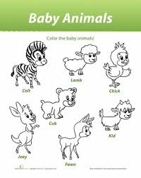Worksheets Baby Animals Learn Names Of