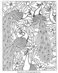 Nature Coloring Pages Birds Book Peacock Peacocks