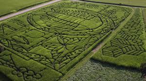 Lodi Pumpkin Patch Wisconsin by Treinen Farm Corn Maze A Trilobite Youtube