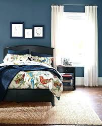 Blue Master Bedroom Ideas Paint Simple Decor