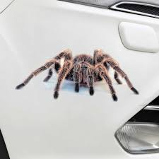 100 Tarantula Trucks Spider Lizard 3d Animal Emulation Truck Trailer Room Window Door Car