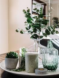 so schön natürlich dekotrend eukalyptus