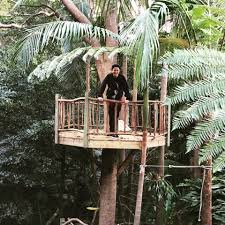 Wild Rumpus   Backyard Treehouse Design Our Work Tree Houses By Dave Modern Treehouse Designed As A Weekender In The Backyard For 9 Completely Free House Plans Funky Video Hgtv Cool Designs We Wish Had In Our Photos Steal This Look A Fort Gardenista Child Within Max Backyard Treehouse Scene Tree Incredible Treehouses You As Kid The Design Dome 25 Ideas Youtube