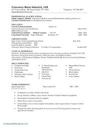 12 Professional Resume Writers Nyc Examples | Resume ...
