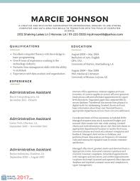 Professional Resume Examples 2017