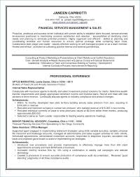 Short Resume Example From Summary Sample