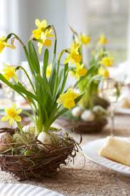 A Spring Arrangement Of Daffodils Speckled Eggs In Bird Nests