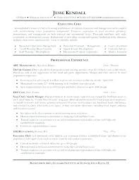 Sample Resume For A Chef Resumes Examples Free