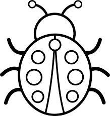 Awesome And Beautiful Bug Coloring Page Pages