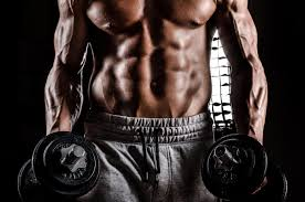 salle de sport salle de musculation renforcement musculaire