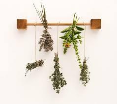 Best 25 Herb rack ideas on Pinterest