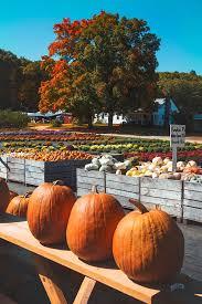 Chesterfield Berry Farm Pumpkin Patch 2015 by 48 Best Farmhouse Autumn Love Images On Pinterest Fall Autumn