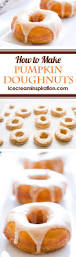 Dunkin Donuts Pumpkin Donut Weight Watcher Points by Best 25 Donut Types Ideas On Pinterest Types Of Donuts Donut