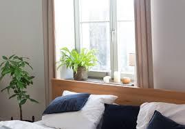 zimmerpflanzen im schlafzimmer garten fräulein