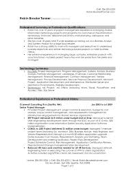 Resume Career Summary