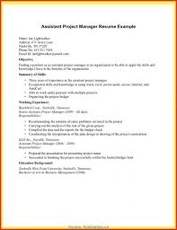 100 Assistant Project Manager Resume Form Of Sample 31982412004551