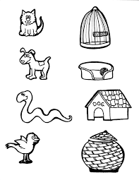 Animal Homes Activity Sheet Related Keywords Suggestions