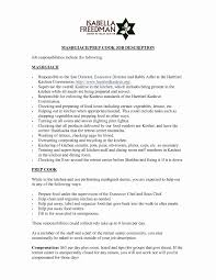 Beautiful Best Resume Career Summary Examples Statement Example Of 25