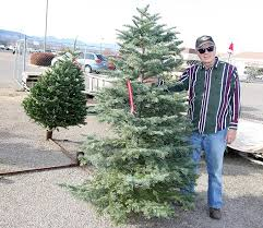 40 Firs Left At Kiwanis Christmas Tree Lot