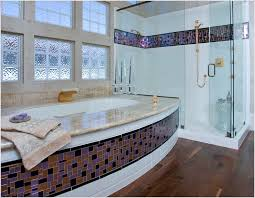 Bathtub Splash Guard Glass by Bathtub Splash Guard Bathroom Contemporary San Francisco Bold