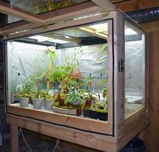 how indoor plants grow light www coolgarden me