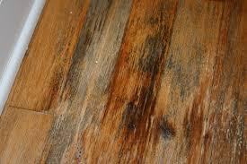 Hardwood Floor Buckled Water by Hardwood Floor Water Damage Certified Restoration