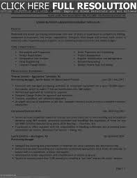 Procurement Category Manager Resume Example Best Of 12 New Format Sample Template 1