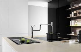 Moen Extensa Faucet Loose At Base by Moen Single Handle Kitchen Faucet Design My Own Kitchen Layout