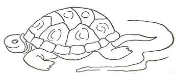 Tortue De Mer Doodle Style Page De Coloriage Illustration De Vecteur
