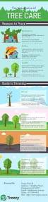 Baltimore County Christmas Tree Recycling 2015 by Best 25 Tree Pruning Service Ideas On Pinterest Tree Pruning