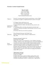 Personal Assistant To Ceo Resume Awesome Executive Assistant Resume